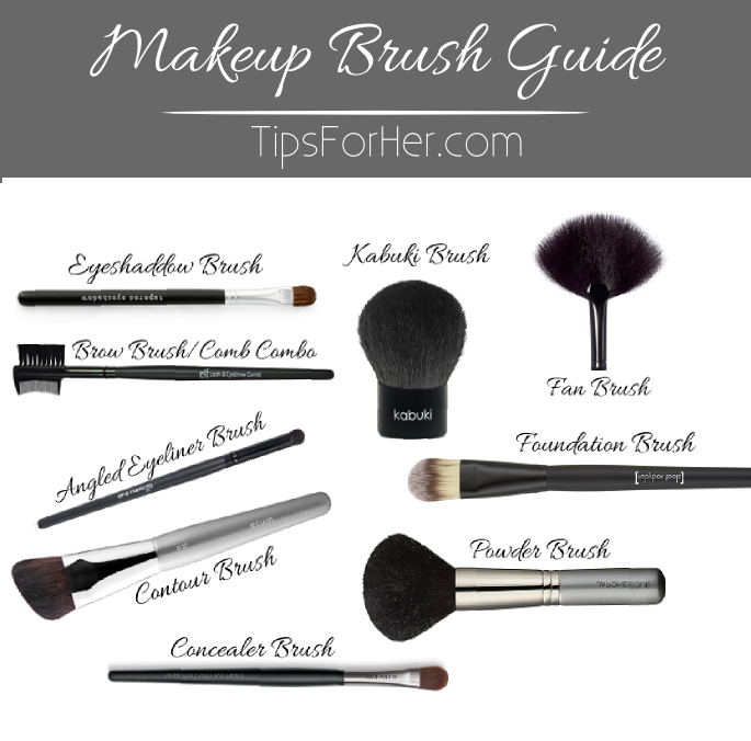 makeup brushes guide for beginners. makeup brush guide - tipsforher brushes for beginners a