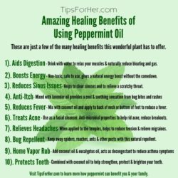 healing-benefits-of-using-peppermint-oil